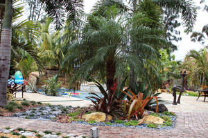 Custom Landscape Design & Installation